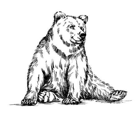 Ilustración de black and white engrave ink draw isolated vector grizzly bear - Imagen libre de derechos