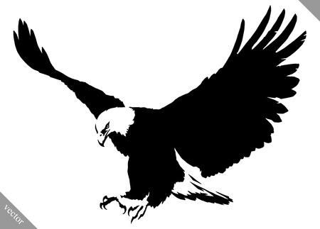 Ilustración de black and white linear paint draw eagle bird vector illustration - Imagen libre de derechos