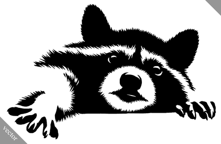 Illustration for black and white linear paint draw raccoon vector illustration - Royalty Free Image
