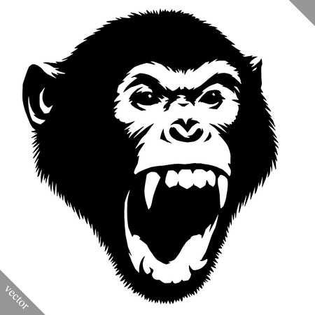 Illustrazione per Black and white linear paint draw monkey vector illustration. - Immagini Royalty Free