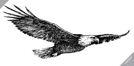 Ilustración de Black and white engrave isolated eagle vector art. - Imagen libre de derechos
