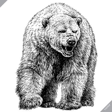 Illustrazione per Black and white engrave isolated bear vector illustration - Immagini Royalty Free