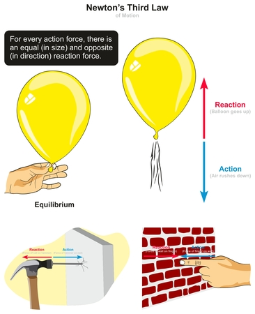 Ilustración de Newton's Third Law of Motion infographic diagram with examples of balloon hammer hitting nail and finger press on wall to explain action and reaction forces for physics science education - Imagen libre de derechos