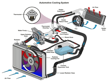 Illustration pour Automotive Cooling System infographic diagram showing process and all parts included radiator hoses coolant flow thermostat fan tank and air flow for mechanic and road traffic safety science education - image libre de droit