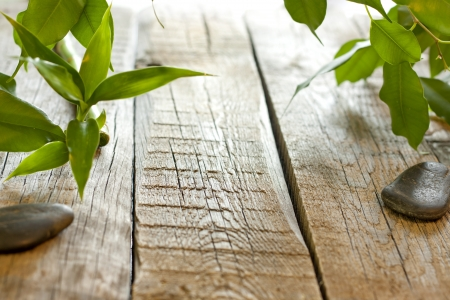 Bamboo on wooden boards with spa stones background concept