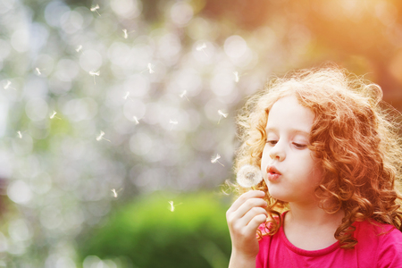 Foto de Little curly girl blowing dandelion. - Imagen libre de derechos