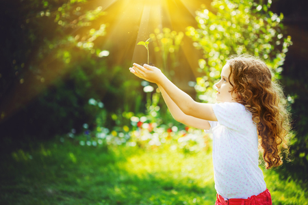 Photo pour Little girl holding young green plant in sunlight. Ecology concept. Background toning to instagram filter. - image libre de droit