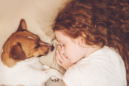 Photo pour Sweet curly girl and jack russell dog is sleeping in night. - image libre de droit