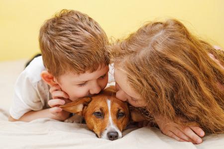 Foto de Little boy and girl kissing a puppy jack russell dog. - Imagen libre de derechos