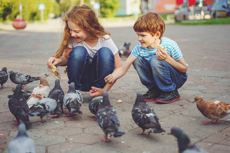 Photo for Children is feeding pigeons with bread outdoors. - Royalty Free Image