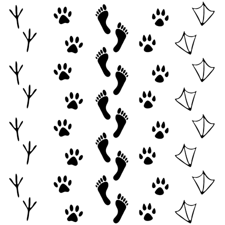 Ilustración de Vector set of human and animal, bird footprints icon. Collection of bare human foots, cat, dog, bird, chicken, hen, crow, duck footprint. Design for frames, invitation and greeting cards - Imagen libre de derechos