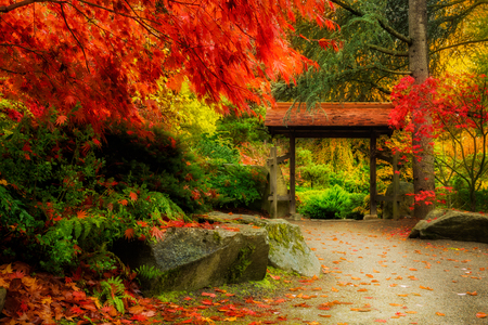 Photo pour Wooden Japanese Gate and lush fall foliage in Kuobota Garden, Seattle - image libre de droit