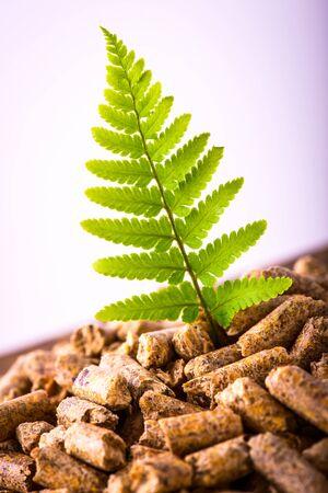 Foto de natural pellet fuel - green renewable sustainable economy - Imagen libre de derechos