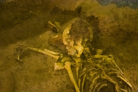 Photo pour Photo picture Archaeological find skeleton of human being - image libre de droit