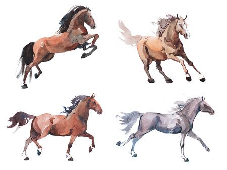 Foto de Watercolor painting of galloping horse, free running mustang aquarelle - Imagen libre de derechos