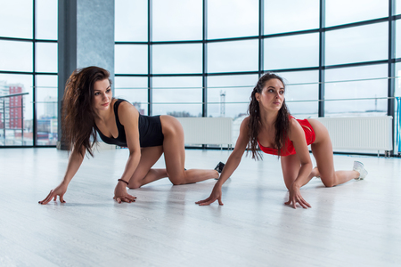 Photo pour Two attractive young women wearing bodysuits doing cat stretch standing on all fours looking away from camera during photoshoot in loft apartment. - image libre de droit