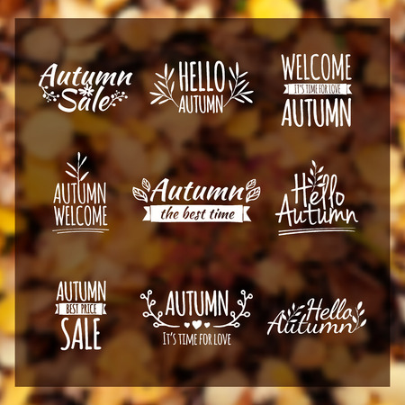 Illustration for Logotypes set. Autumn badges, labels, ribbons, elements, wreaths and laurels, branches. Hand drawing. Vintage vector on blurred background leaf litter - Royalty Free Image