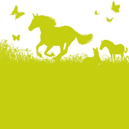 Illustration pour Horses on pasture - image libre de droit