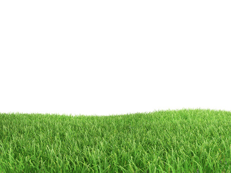 Foto de Green grass isolated on white background - Imagen libre de derechos