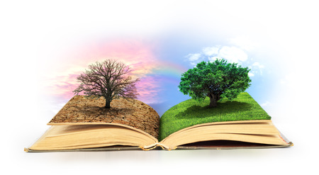 Foto de Open book. One side full of grass with a life tree, different side is desert with a dead tree. - Imagen libre de derechos