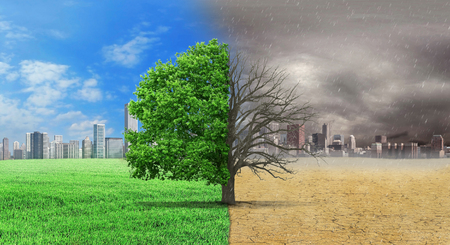 Photo pour The concept of climate has changed. Half alive and half dead tree standing at the crossroads of climate change on city background. Save the environment. - image libre de droit