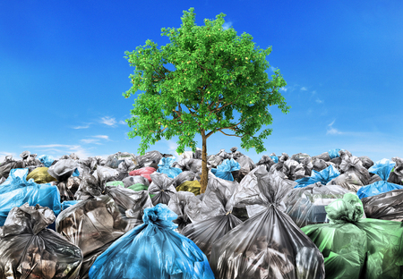 Photo for Rebirth concept. A tree grows from a pile of garbage. Recycle. - Royalty Free Image