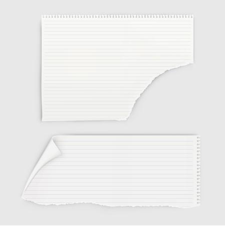 Illustration pour Set of pieces notebook paper with round perforation. - image libre de droit