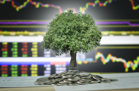 Foto de The tree are grow up on coins stack and stock marke chart and graph background. Concept of finance,banking and growth investment. - Imagen libre de derechos