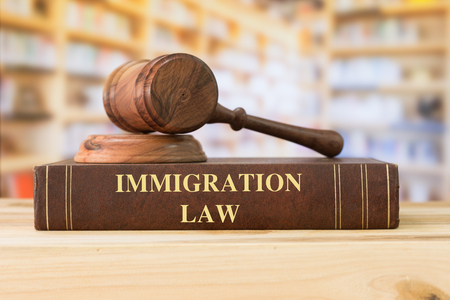 Photo for Immigration Law books with a judges gavel on desk in the library. Law education ,law books concept. - Royalty Free Image
