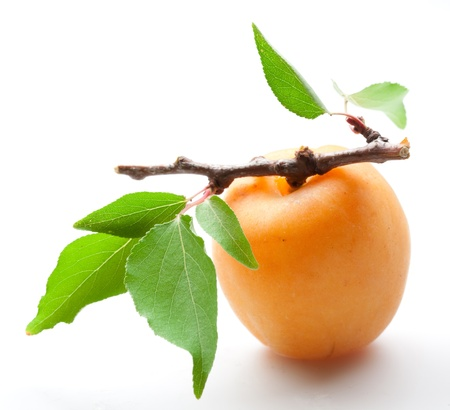 Photo for bright apricot with leaves  close-up on white background - Royalty Free Image