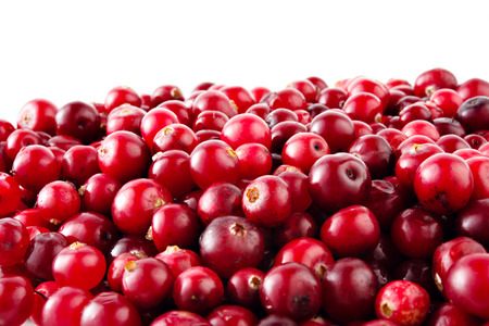 Photo for Cranberries - Royalty Free Image