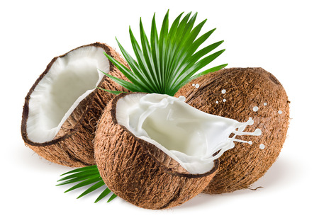 Photo for Coconuts with milk splash and leaf on white background - Royalty Free Image