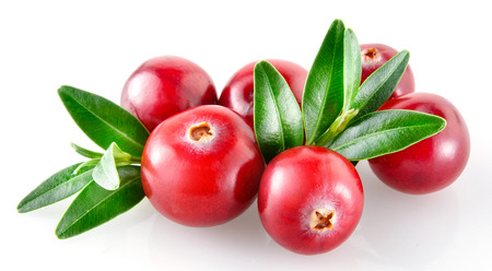 Photo for Cranberry on white background - Royalty Free Image