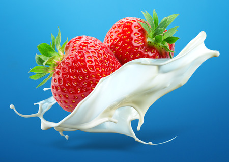 Foto de Two strawberries falling into milk splash isolated on blue background - Imagen libre de derechos
