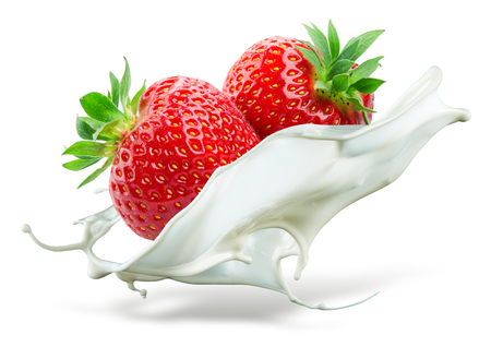 Photo for Two strawberries falling into milk. Splash isolated on white background - Royalty Free Image