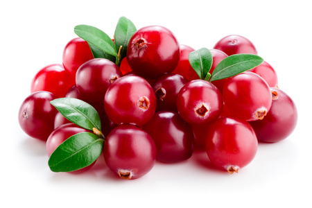 Photo for Cranberry with leaves isolated on white. - Royalty Free Image