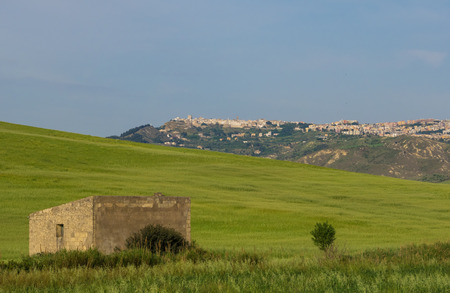 Photo for Montescaglioso (Italy) - The green countryside of the old town in province of Matera, Basilicata region, southern Italy - Royalty Free Image