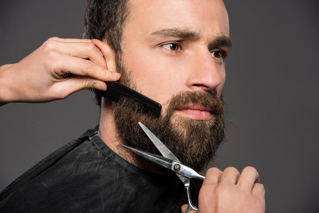 Image as somebody is trimming the beard of a young man on the grey background.