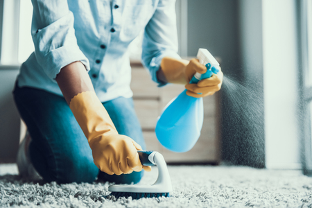 Photo for Young Beautiful Woman Cleaning Carpet with Brush. Closeup of Girl wearing Protective Gloves Cleaning Carpet by spraying Cleaning Products and using Brush. Woman Cleaning Apartment - Royalty Free Image