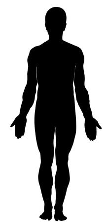 Silhouette of human. Anatomy