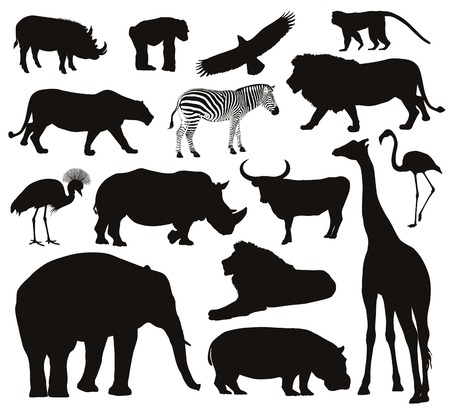 Illustration for African animals silhouettes set  Vector illustration   - Royalty Free Image
