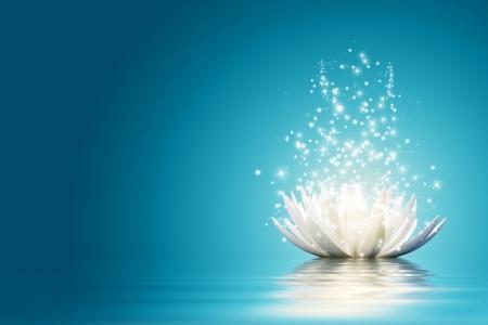 Foto de Magic Lotus flower - Imagen libre de derechos