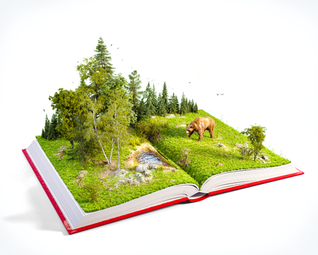 Photo pour Opened red book with wild forest and bear on pages. Endangered-species list. Unusual 3D illustration. Isolated - image libre de droit