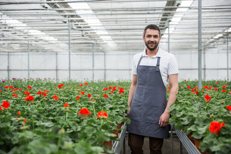 Photo for Photo of cheerful young man standing in greenhouse near plants. Looking camera. - Royalty Free Image