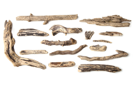 Photo for Set of driftwood isolated on white background. Pieces of river drift wood. - Royalty Free Image