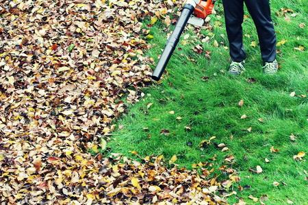 Foto de Gardener clearing up the leaves using a leaf blower tool - Imagen libre de derechos