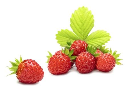 Foto de Wild strawberry macro isolated on white - Imagen libre de derechos