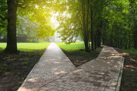 Photo for Fork in the road in the empty park.Sunny summer morning. - Royalty Free Image