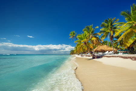 Photo pour Landscape of paradise tropical island beach with perfect sunny sky - image libre de droit