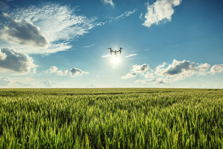 Foto de Flying drone and green wheat field - Imagen libre de derechos